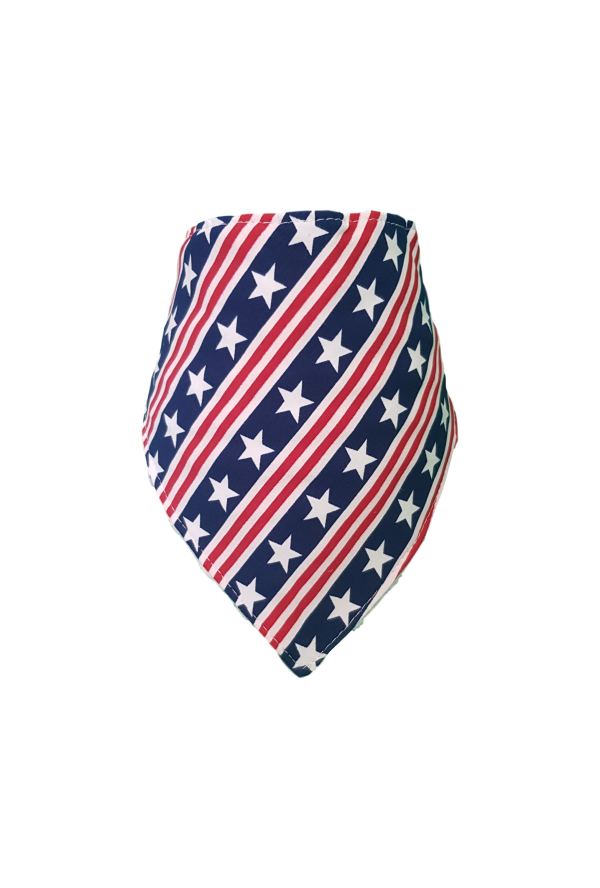 Stars & Stripes  Bib