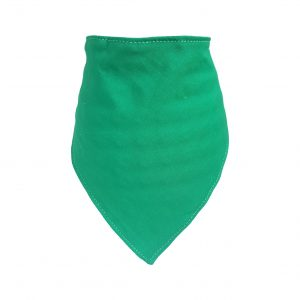 Plain Green Bib